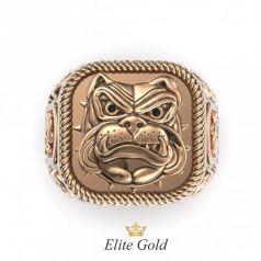 Золотой мужской перстень Bulldog