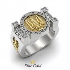Эксклюзивное мужское кольцо с гербом и камнями