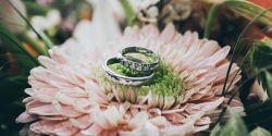 обручальные кольца на лилии