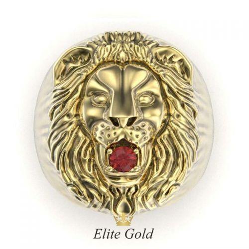 золотое кольцо Лев - вид сверху